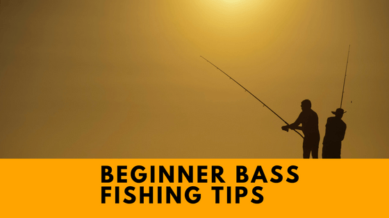 Beginner Bass Fishign Tips