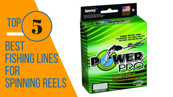 Best Fishing Lines for Spinning Reels