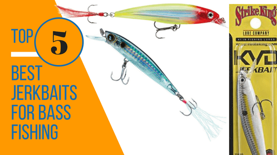 Best jerkbaits for bass fishing