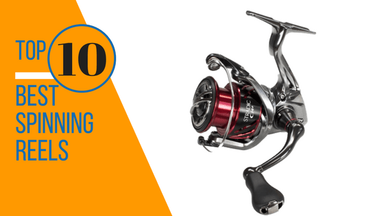 Top 10 Best Spinning Reels