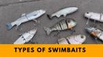 Types of Swimbaits