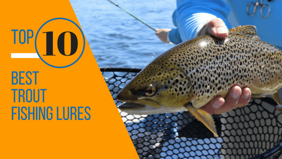 Top 10 Best Trout Lures