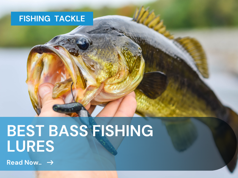 Best Bass Lures for Bass Fishing