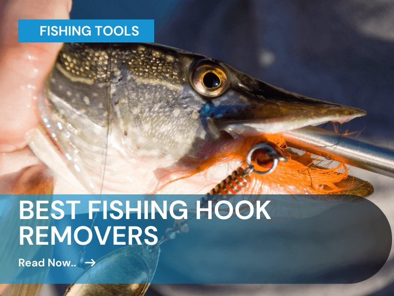 fish saver hook remover